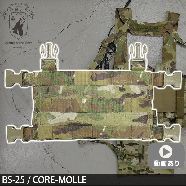 BS-25 / CORE MOLLE マルチカム